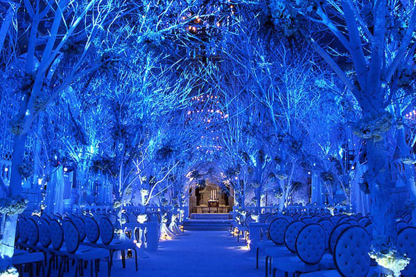 winter-wedding-themes-christmas